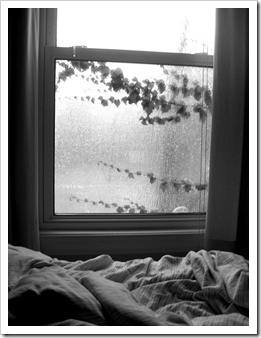 cama de inverno