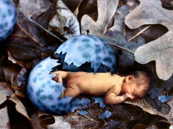 newbornbaby_egg